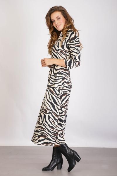 Maxi fantasie zebra kraag gouden knopen + riem  dierenprint fake