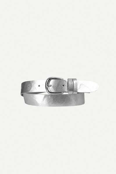 Zilver basis gesp zilver  zilver / l.grijs