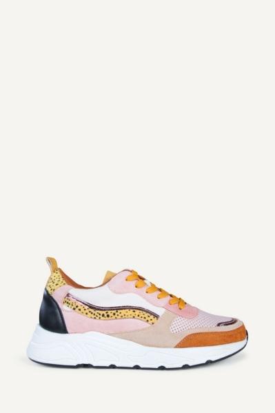 Poelman Sneaker Multicolor C18582X7POE1