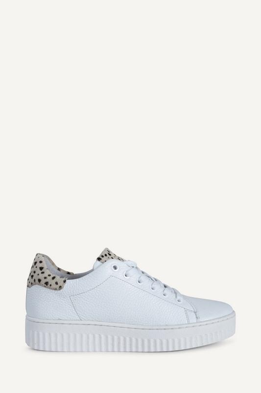 Shoecolate Sneaker Wit 8.10.02.048